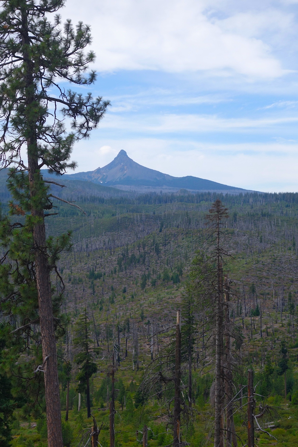 Mount Washington viewpoint scenic lookout - Central Oregon Road Trip Stops