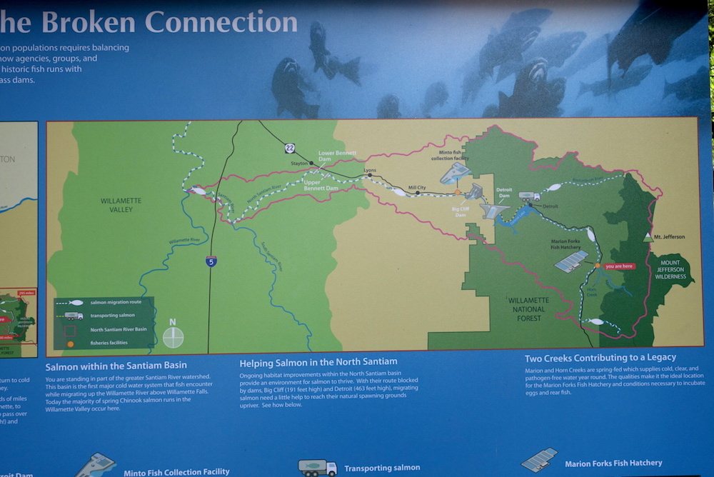 Fish Hatchery Map - Central Oregon Road Trip Stops
